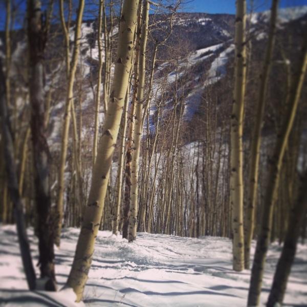 Tree Ski
