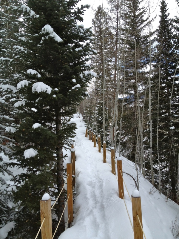 Vail Trail
