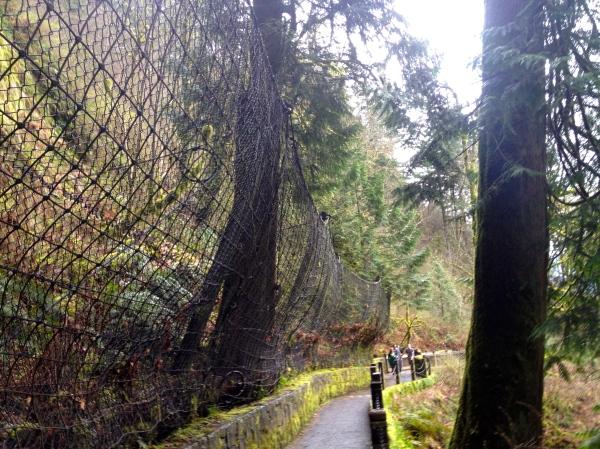 Jurassic Fences
