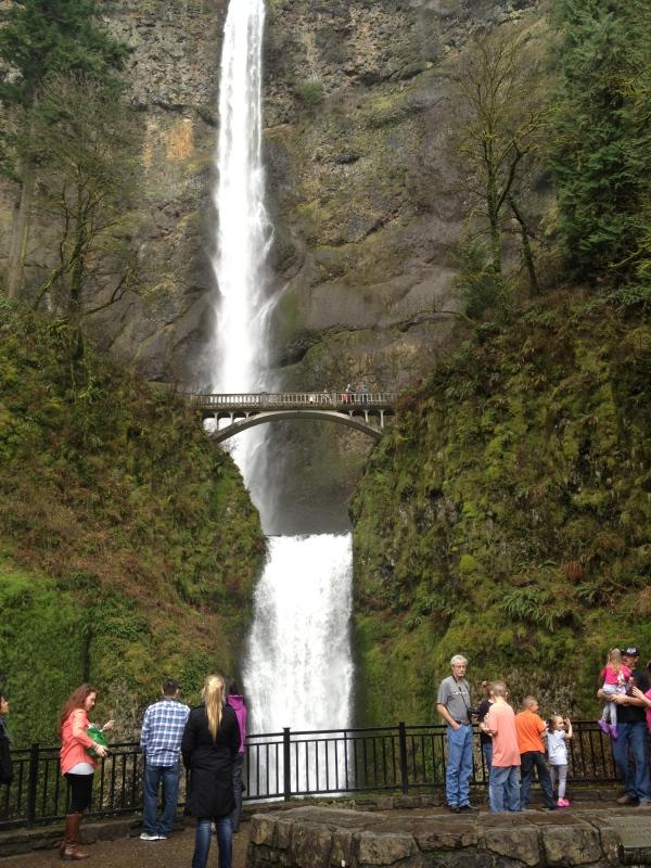 Multnomah Falls Visitors