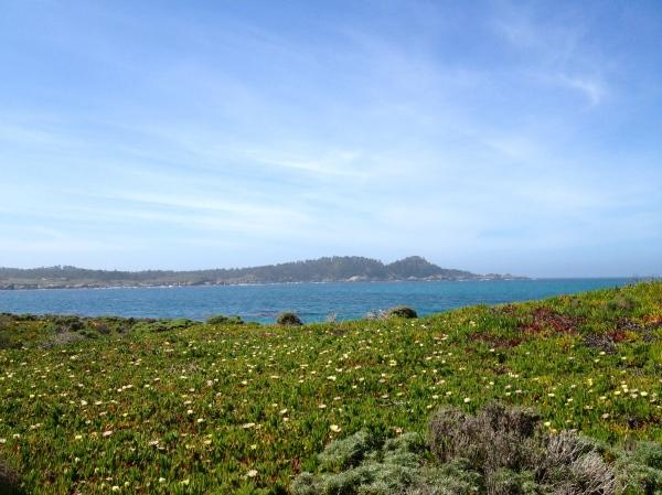 Carmel Beach Walk