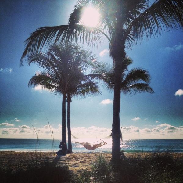 Ft. Lauderdale Beach Hammock