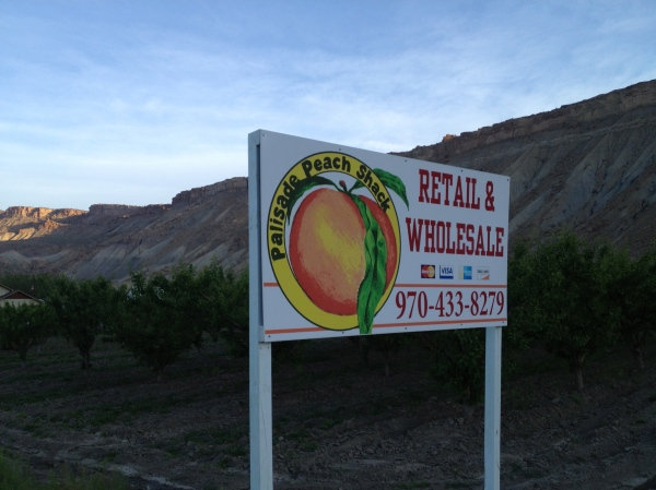 Palisade is the peach capital of Colorado and grows to-die-for fruit over the summer.  Even I, a non-fruit-lover, can't wait until they're ripe.
