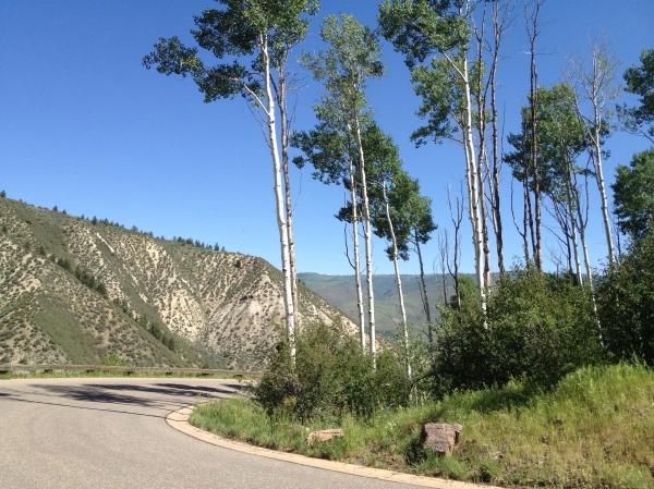 Cresta Road