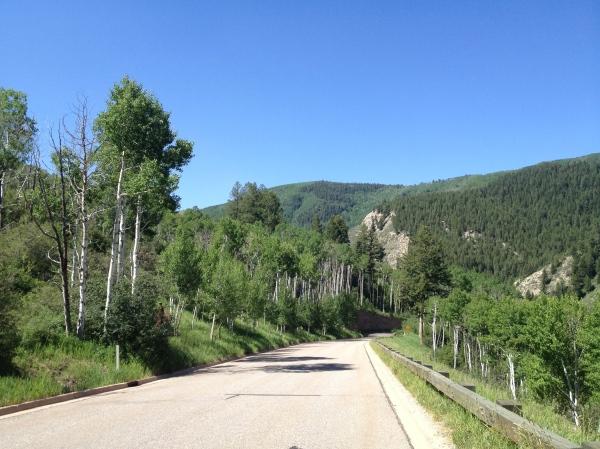 Cresta Descent