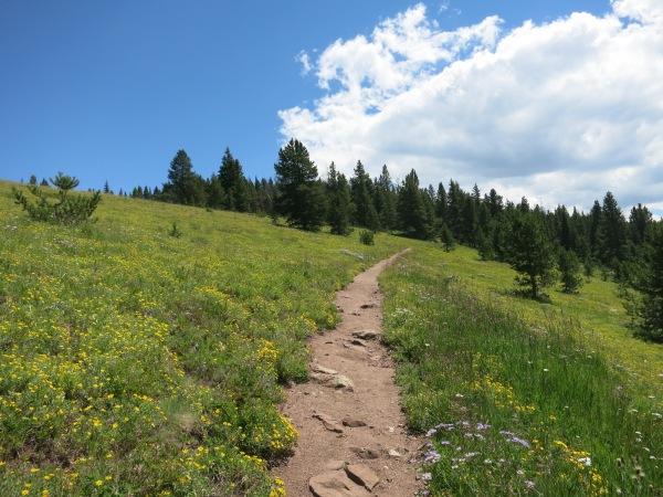 Ridge Route Vail
