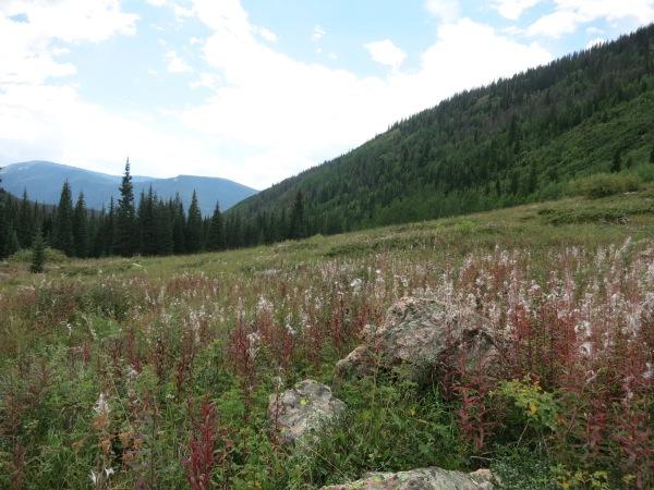 Pitkin Lake Trail Vail