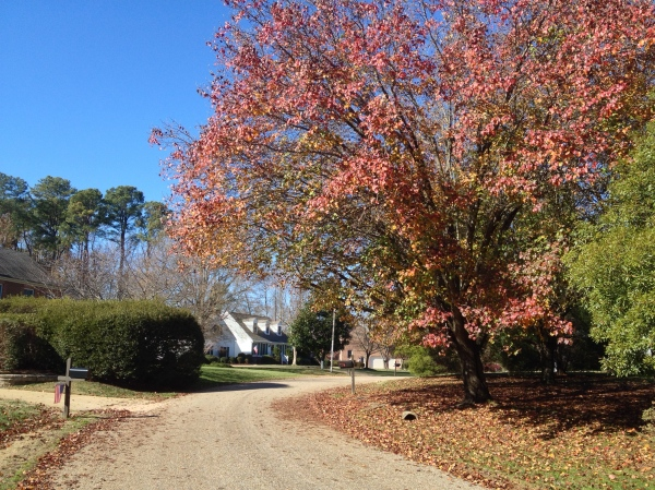 Fall in Kingsmill