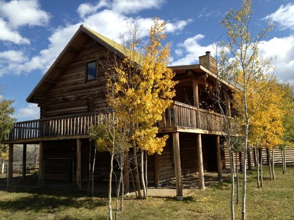 Yellow ranch