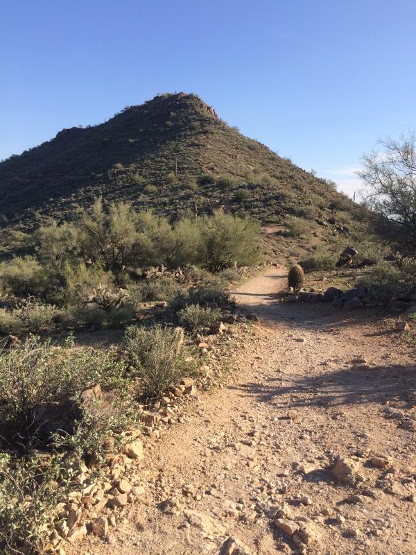 Sunrise Trail Phoenix