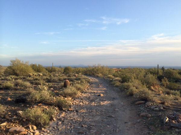 Sunrise Trail Phoenix